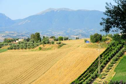 Apennines in Marche