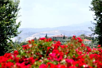 View from Marche with bougainvillea