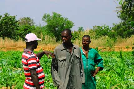 Naakpi and his vegetable garden in Ghana