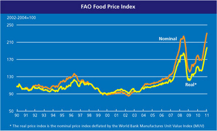 International food commodity prices