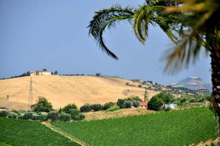 houses on the hilltops in Marche