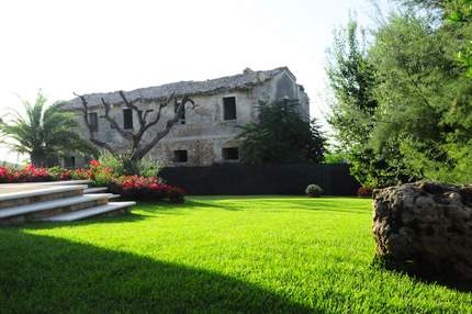 Our garden in Marche